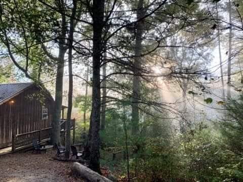 Evergreen Cabin 3