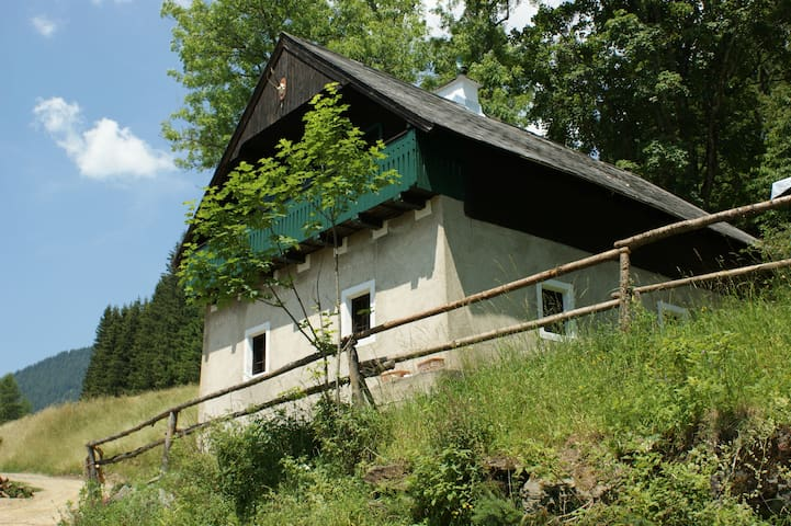Geiereckalm ( Trendleralm) - Gößgraben - Lomamökki