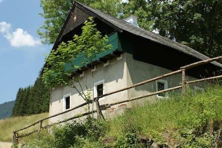 Geiereckalm ( Trendleralm) - Gößgraben - Faház