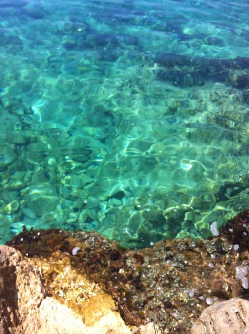 clear sea ...