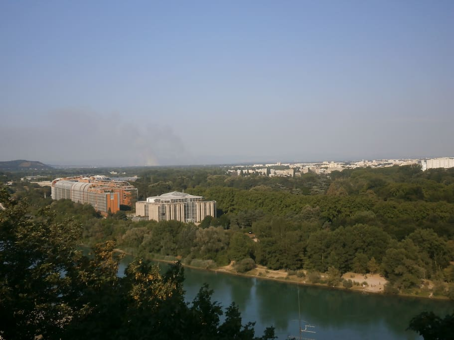 Une vue magnifique sur le parc de la tête d'or et la cité internationale