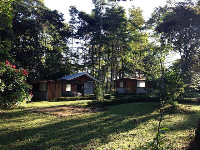 Paraíso Natural en Sur Costa Rica - La Lucha - Cabana
