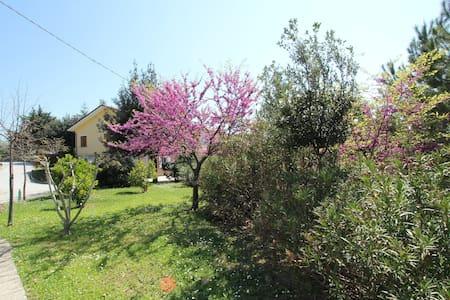 Casa Pinella - Petritoli