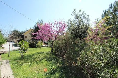 Casa Pinella