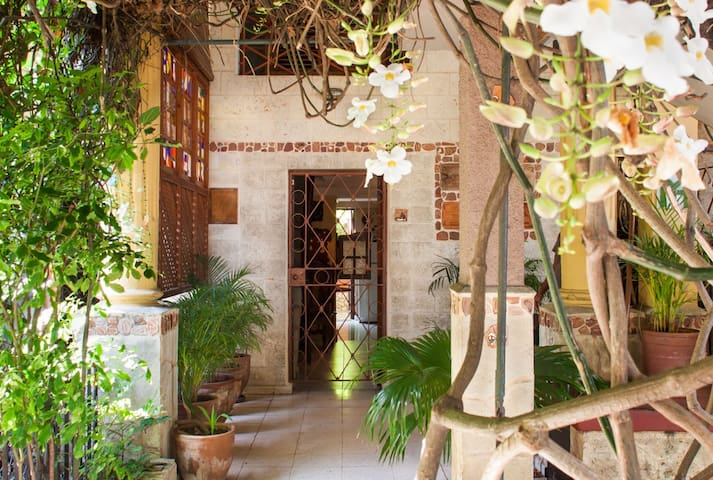 CASA ALBEAR - La Havane - Appartement