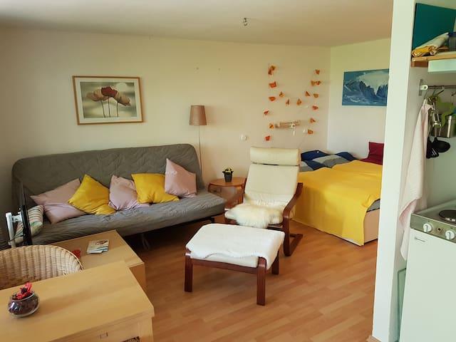 Gemütliches Appartement mit Terrasse