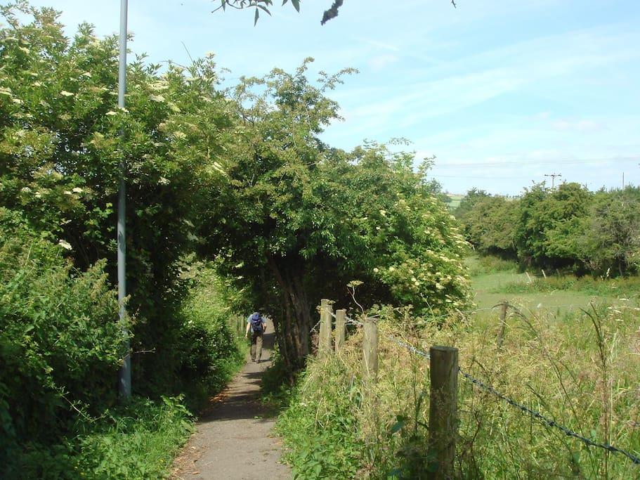 Cinder path from main village
