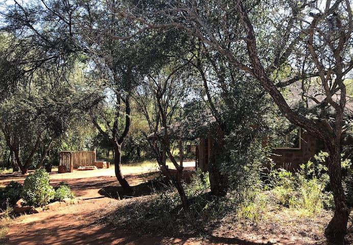 Podica Bush Camp