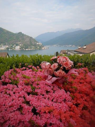 3.5 room lake apt lugano/milano - Porto Ceresio - Pis