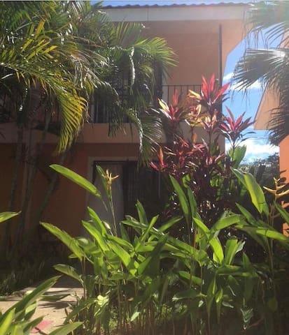 ingresso dal giardino