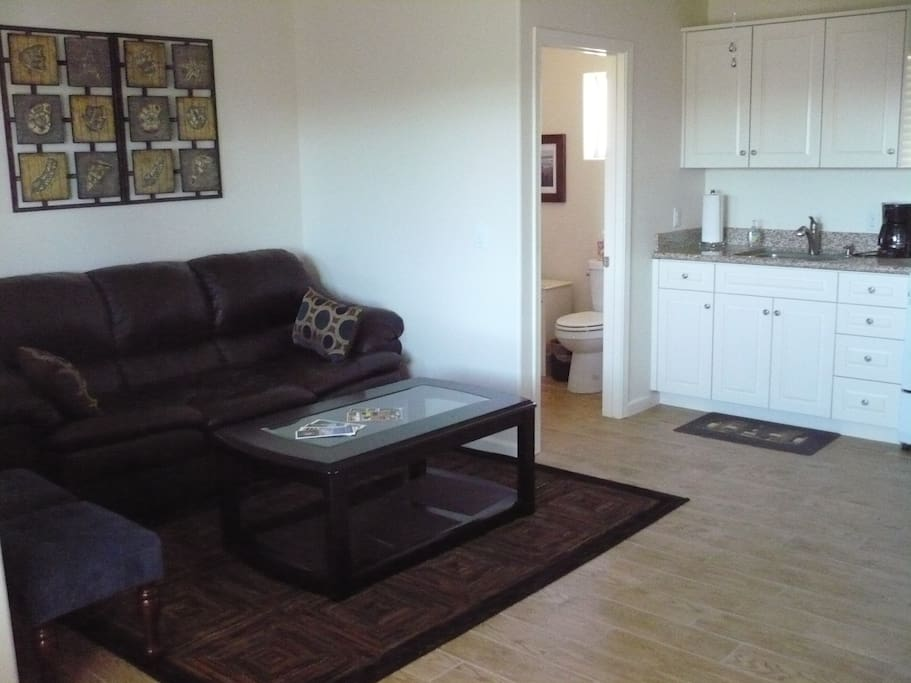 Living room couch and coffee table. Kitchenette cabinets and sink. Door to bathroom and shower.