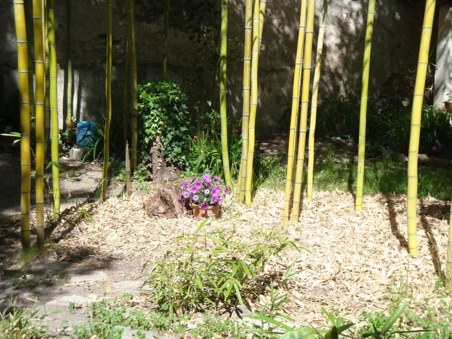 jardin clos sans vis àvis