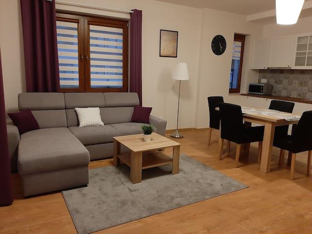 Apartament Osiedle Zdrojowe Nałęczów