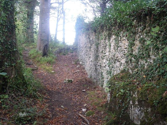 Killarney.National Park.Relax.Enjoy - Muckross Killarney  - Dům