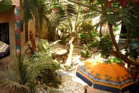 Appartement  ECOLOGIQUE Le Baobab - Sacré Coeur- Mermoz
