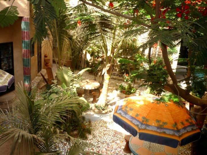 """Appartement écologique  """"Le Baobab"""""""