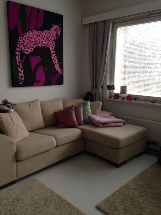 Living room (w/sofa, mattress, television)