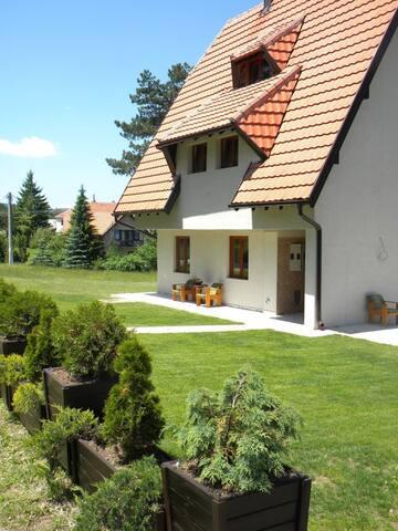 Apartmani Nešović Tara A3