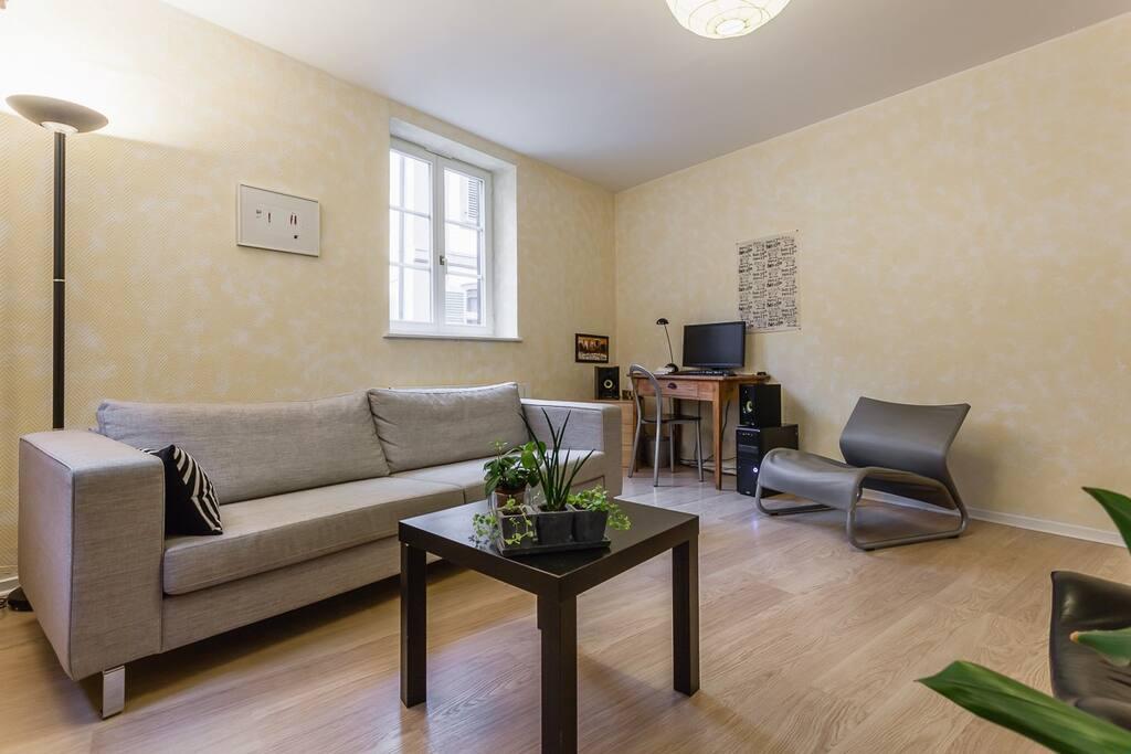 Le salon : canapé, 2 fauteuils, un ordinateur pour surfer sur le net ou écouter de la musique, bibliothèque à disposition...