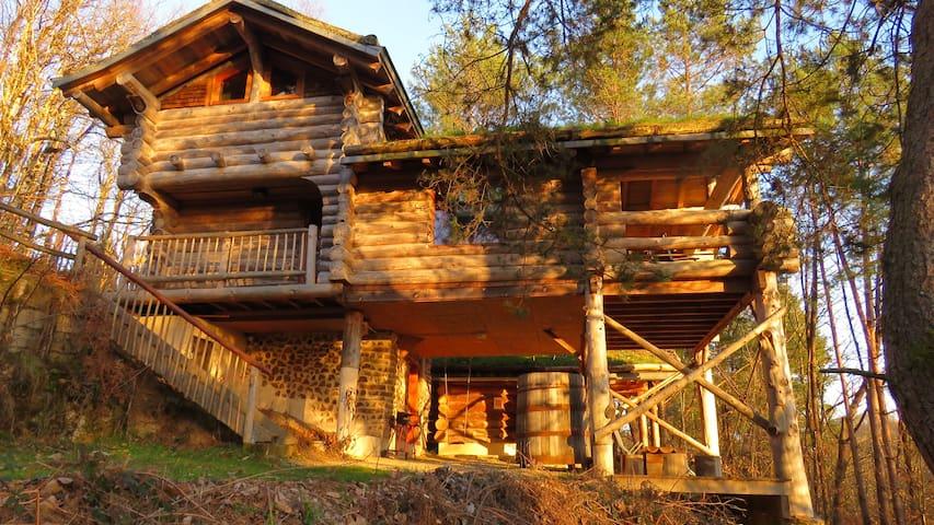 la cabane de Hans Cabane dans les bois