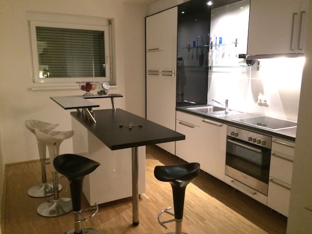Luxurious and Spacious Apartement - Graz - Appartement