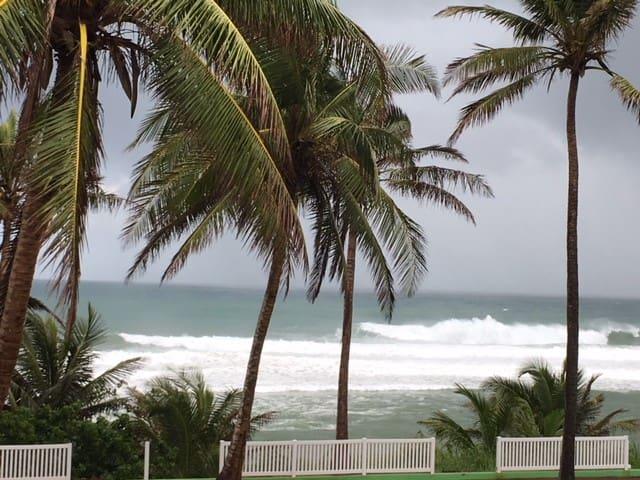 3/2 Oceanfront Calle Felipe Arana, Hatillo, PR #3