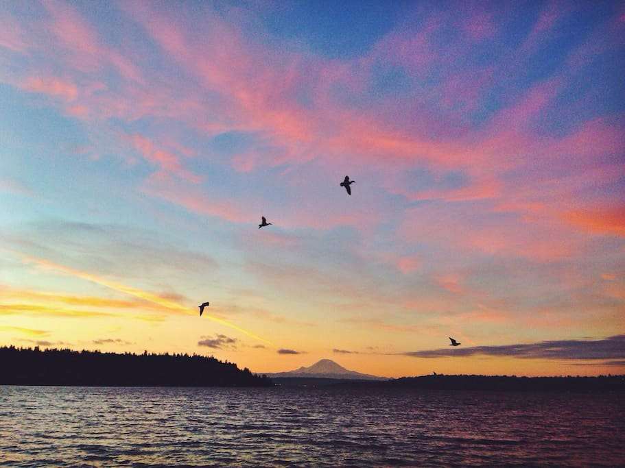 Views like this of Mt. Rainier from Seward Park are just a short walk away.