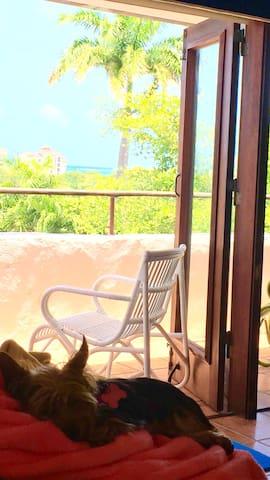 Rio Mar Resort Ocean View plus