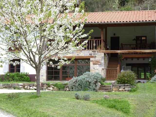 Hotel rural Los Riegos.Habitaciones - Caso - Bed & Breakfast