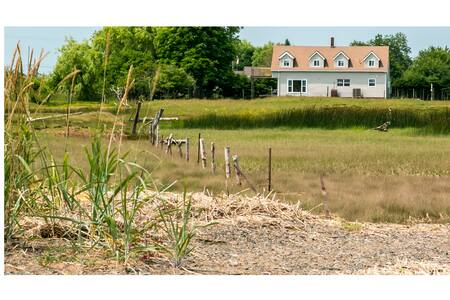 A Biding Place: Still Waters Room - Avonport