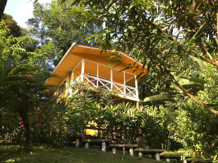 Tree Top Casita with private pool