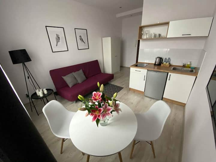 Studio Apartment C City Center-Self Check in 24h