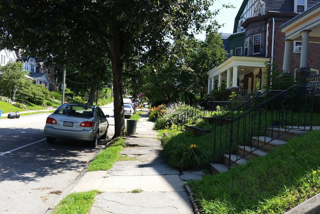 Neighborhood, tree lined street, safe, quite,  community