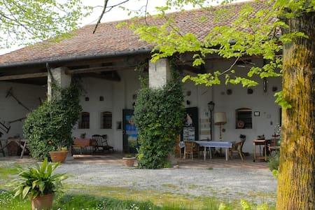 Agriturismo Le Bove - Provincia di Padova - Bed & Breakfast