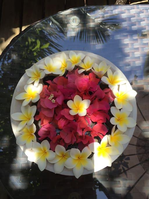 Composition florale de bougainvillées et frangipanier