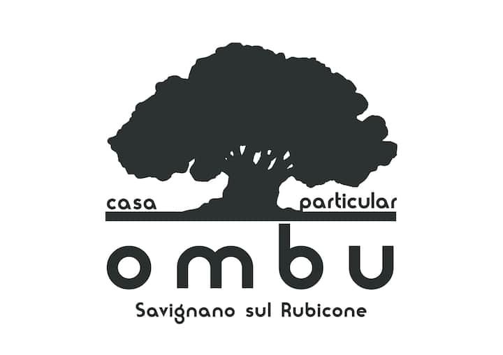 Ombu Casa Particular