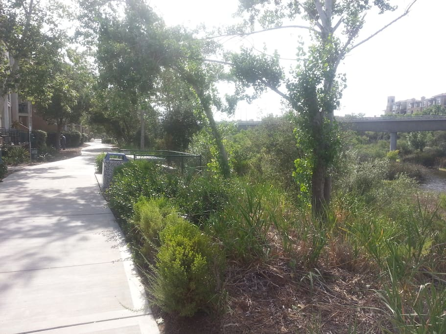 Path around the river for walking/jogging. There is direct access from the building complex.