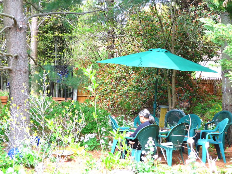 A dining area in the garden.