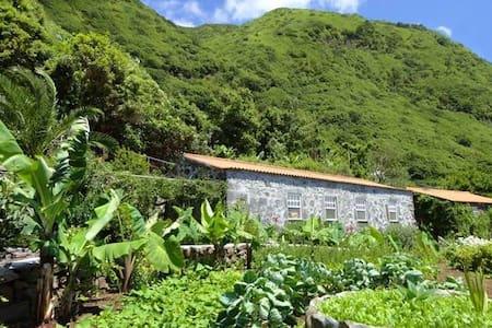 Vistalinda Plantation Guest Room 618/2015 - Fajã dos Vimes - Huis