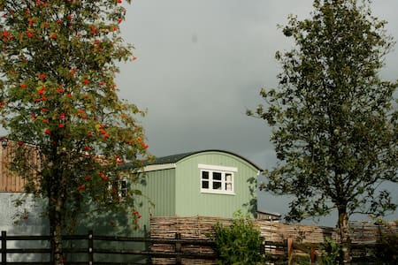 Shepherd's Hut - Barnstaple - Stuga