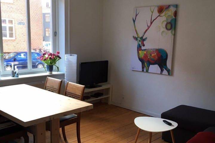 Hyggelig og central - Aalborg - Apartemen