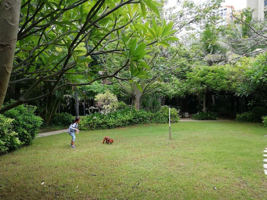 可以溜狗狗的草坪