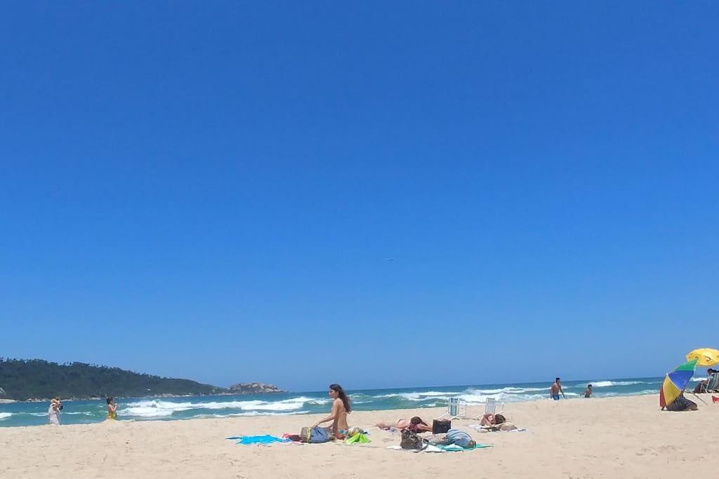 praia do campeche, enfrente ao condomínio.
