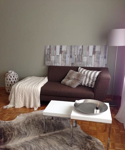 Cozy apartment at Lake Zurich