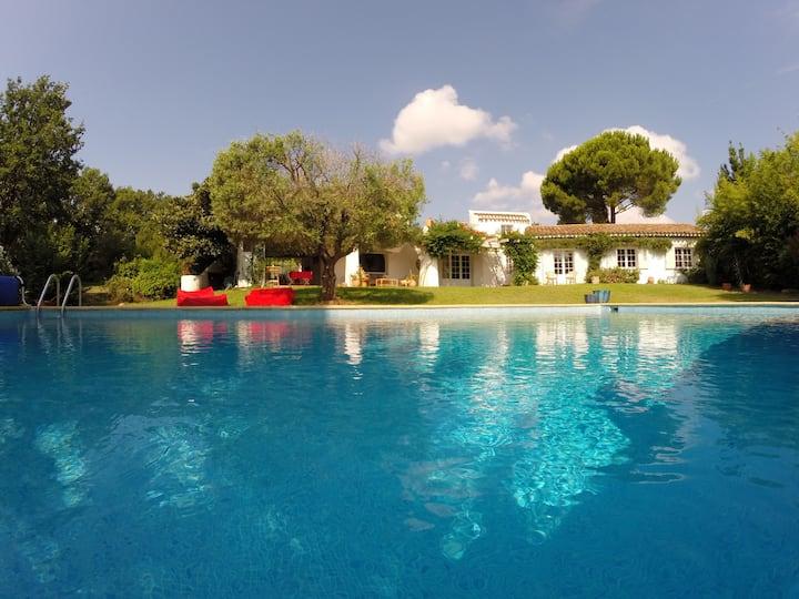 Bastide 12p. - Villa large pool