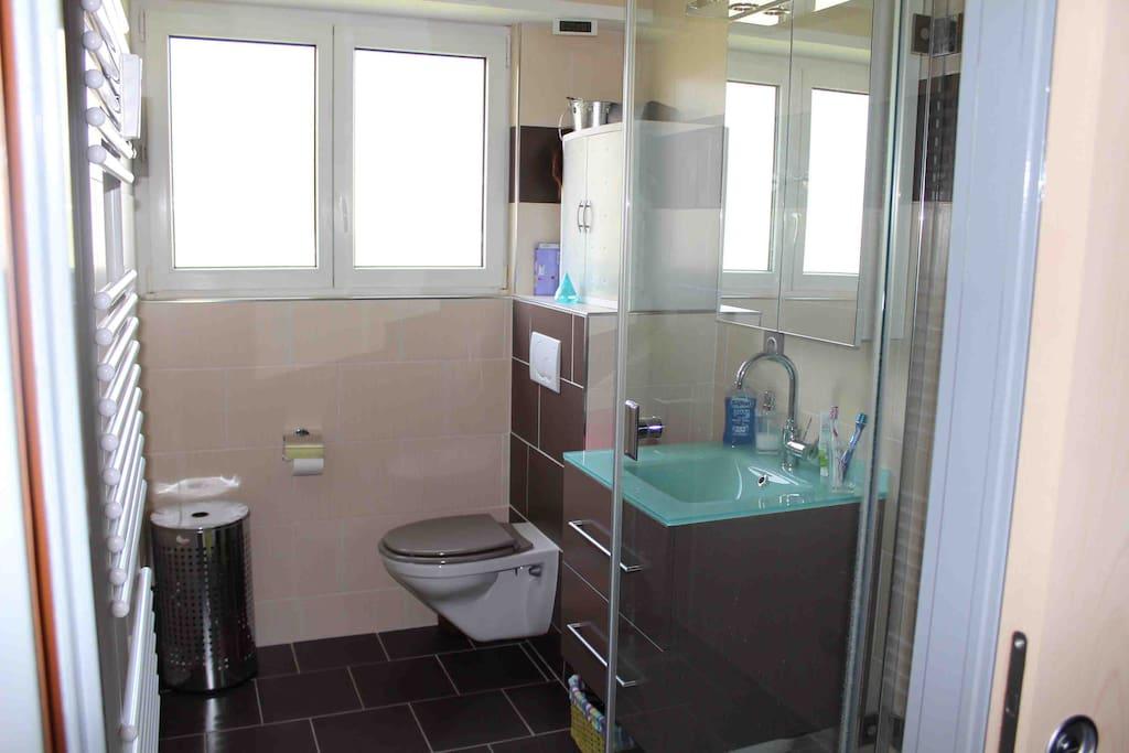 Salle de bain comportant une douche