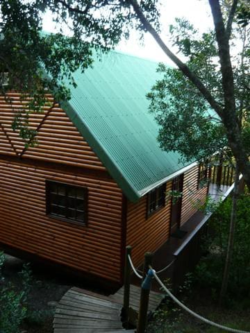 Canopy Forest Cottage - Rheenendal - Cottage