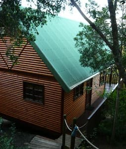Canopy Forest Cottage - Rheenendal - Cabin