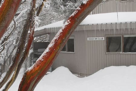 OGGS Lodge private room, 2 bunks - Mount Buller