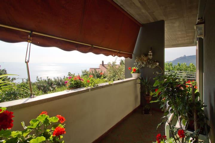 The beautiful flowery flowery terrace!